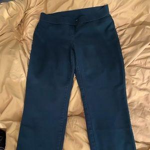 Kim Rogers stretch waist pants.